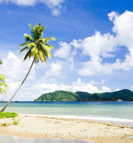 Cannabis dépénalisé à Trinidad et Tobaggo