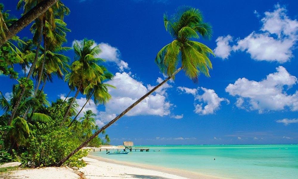 Trinité et Tobago dépénalise le cannabis
