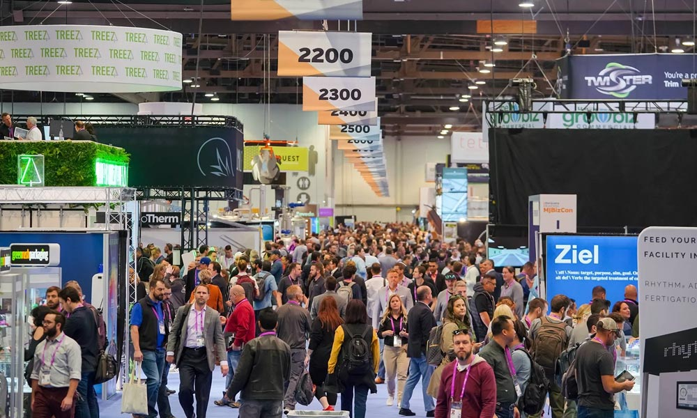 Evenements du cannabis en 2020