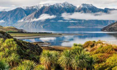 Légalisation du cannabis en septembre 2020 en Nouvelle-Zélande