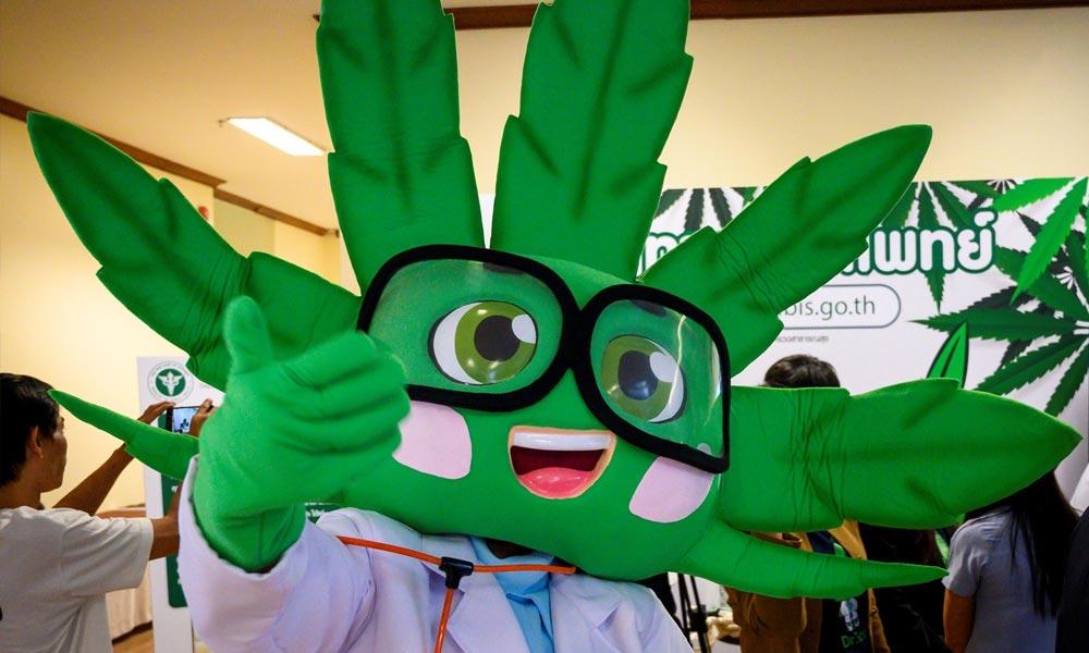 Clinique cannabis en Thaïlande