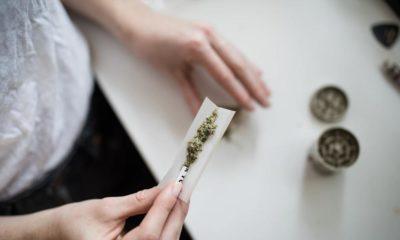 Faux souvenirs et cannabis