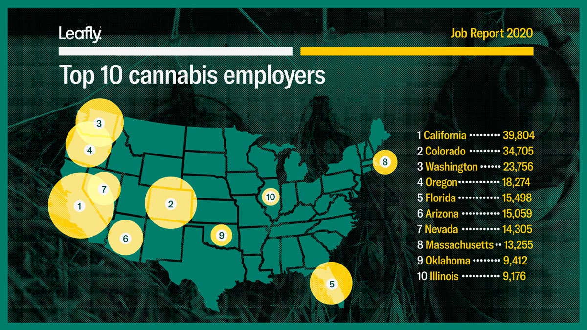 Cannabis employers in the USA