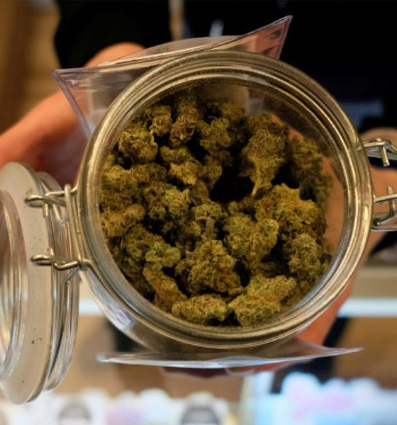 Revenus du cannabis en Illinois