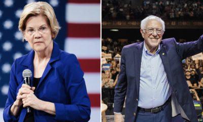 Warren et Sanders et la légalisation du cannabis