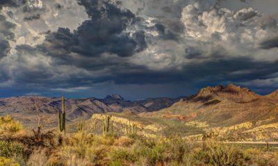 Cannabis en Arizona