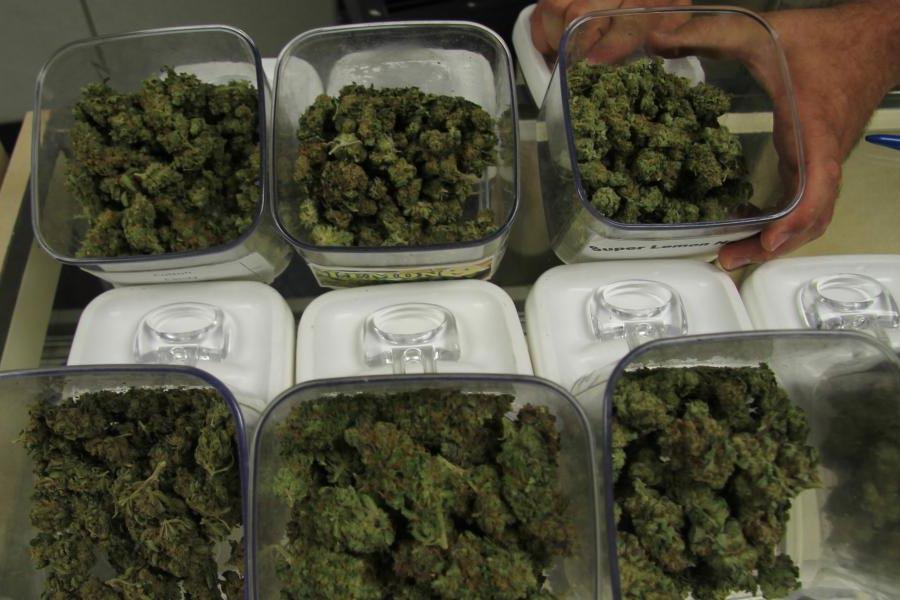 Cannabis pour les touristes en Uruguay
