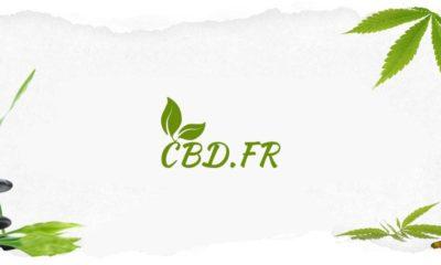 CBD.fr