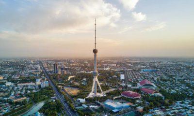 Légalisation du chanvre en Ouzbekistan