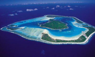 Cannabis médical à Tahiti