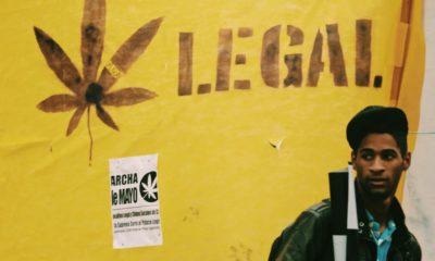 Cannabis légal en Uruguay