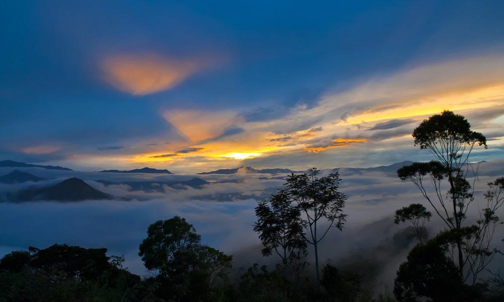 Cannabis médical en Equateur