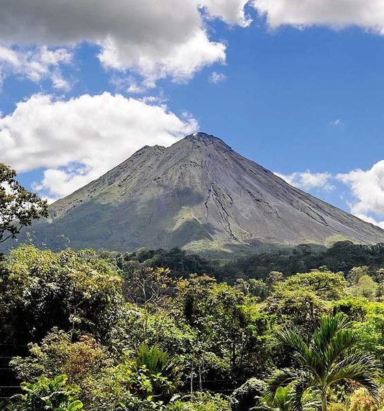 Chanvre au Costa Rica
