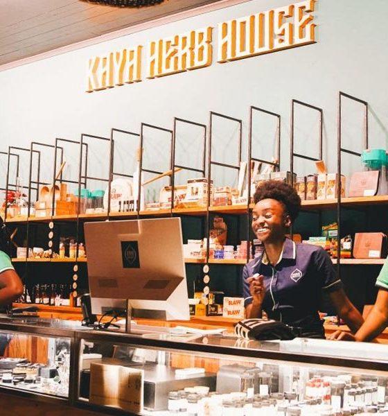 Dispensaire de cannabis en Jamaïque