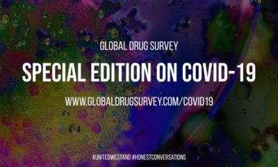 Global Drug Survey 19