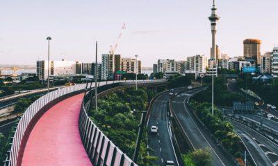 Loi de légalisation du cannabis en Nouvelle-Zélande