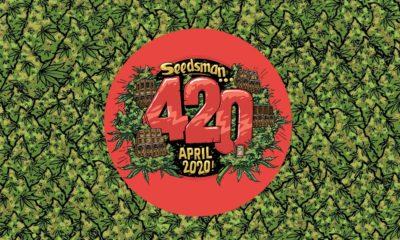 Le 420 de Seedsman