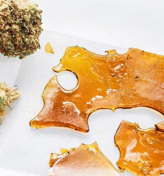Concentrés de cannabis en THC