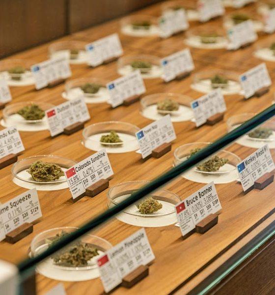Ventes légales de cannabis aux Etats-Unis en 2020