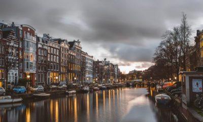 Licences de culture de cannabis aux Pays-Bas