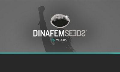 Dinafem