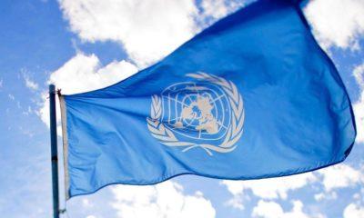 La France soutient le cannabis médical à l'ONU