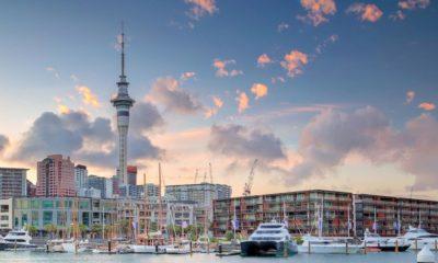 Référendum sur la légalisation du cannabis en Nouvelle-Zélande