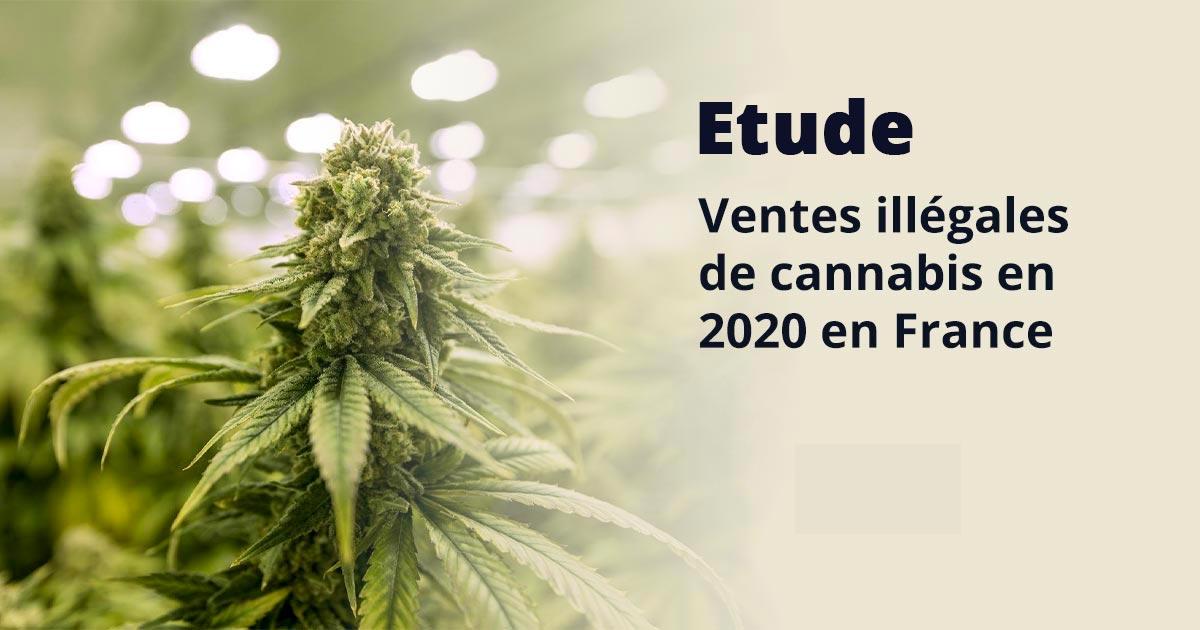 Ventes illégales de cannabis en 2020