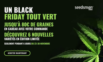Black Friday Seedsman