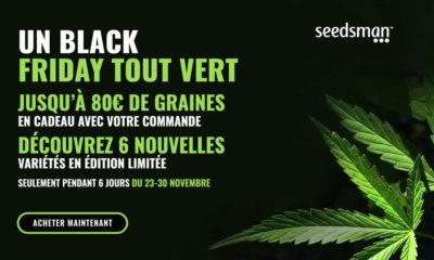 Black Friday Seedsman