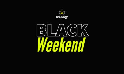 Black Weekend de Weedzy