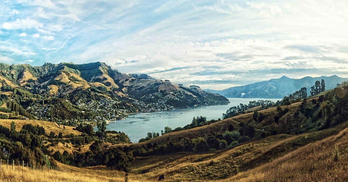 Résultat du référendum sur le cannabis en Nouvelle-Zélande
