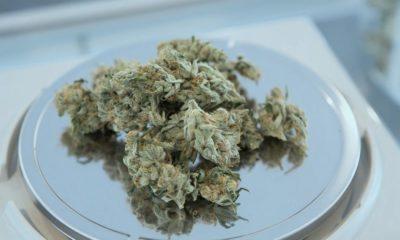 Magasins de cannabis en Ontario