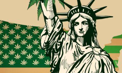 Légalisation du cannabis aux Etats-Unis