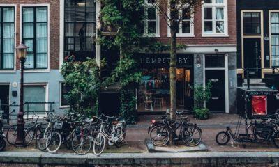 Touristes et coffeeshops à Amsterdam