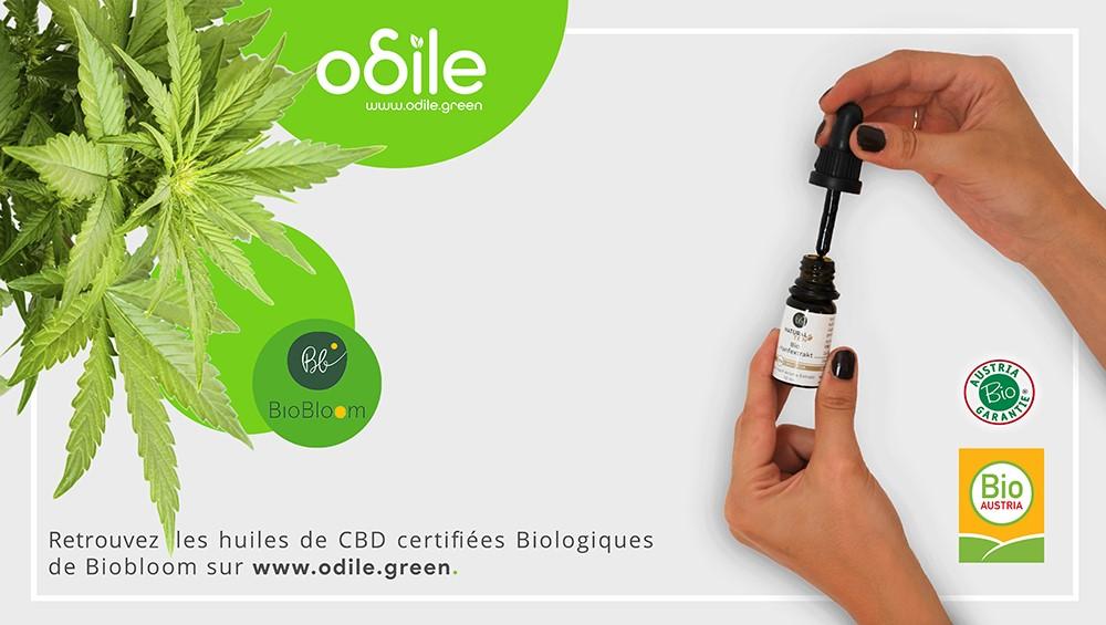 Huile CBD Odile.green
