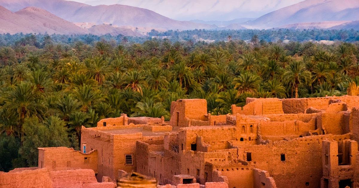 Légalisation du cannabis médical au Maroc