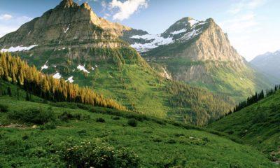 Régulation du cannabis au Montana