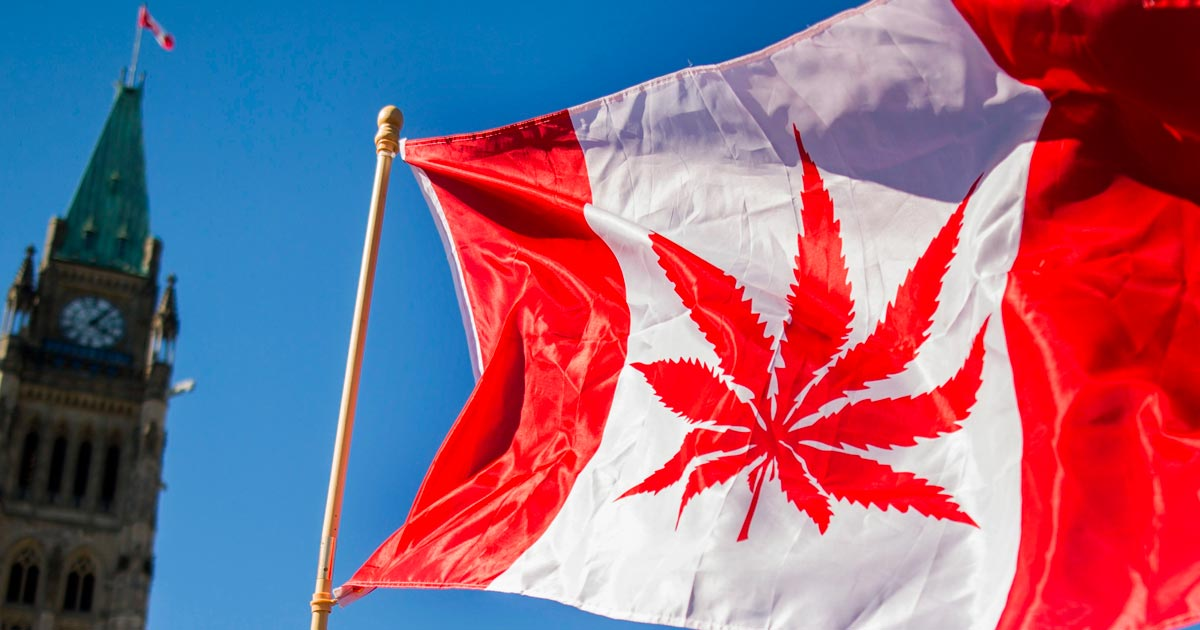 Drapeau du Canada avec une feuille de cannabis