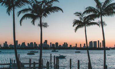 Légalisation du cannabis en Floride
