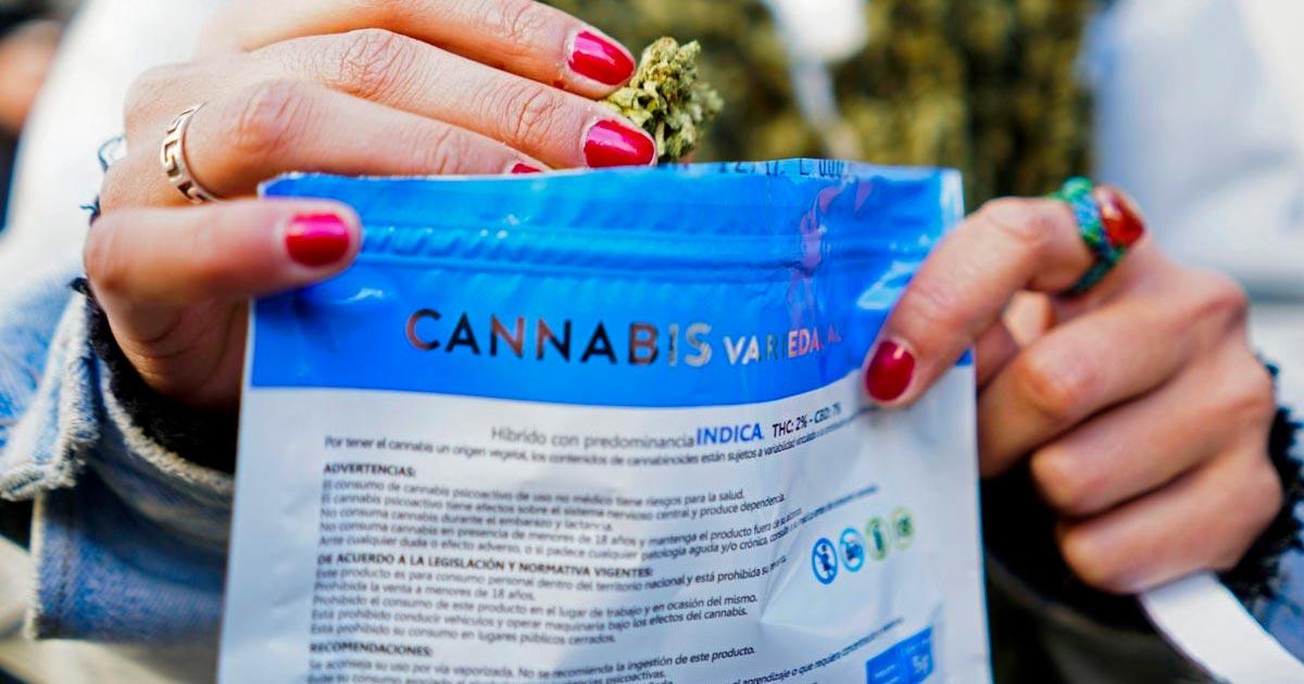 Cannabis en Uruguay