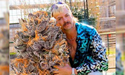 La Weed de Joe Exotic
