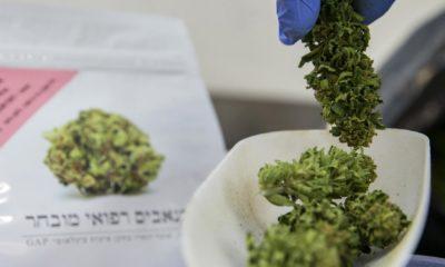 Cannabis en Israël pour les militaires