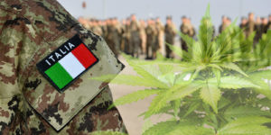 Italie : du cannabis médical bientôt dans les pharmacies