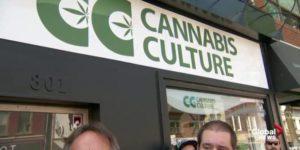 Montréal accueille 10 dispensaires Cannabis Culture