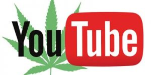 3 chaines Youtube sur le cannabis