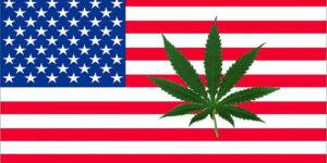 10 choses qui ont changé (ou non) sur le cannabis en 5 ans aux Etats-unis