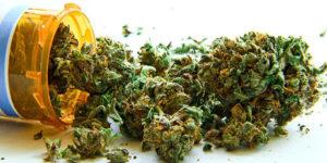 Hawaï : Le premier dispensaire de cannabis médical vient d'ouvrir ses portes