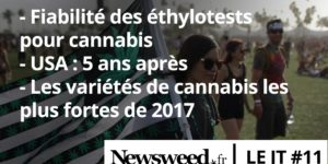 Le JT de Newsweed – #11