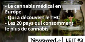 Le JT du cannabis #3
